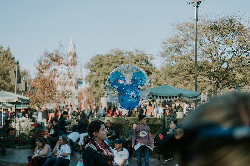 Disneyland with the Ford Family-343.jpg