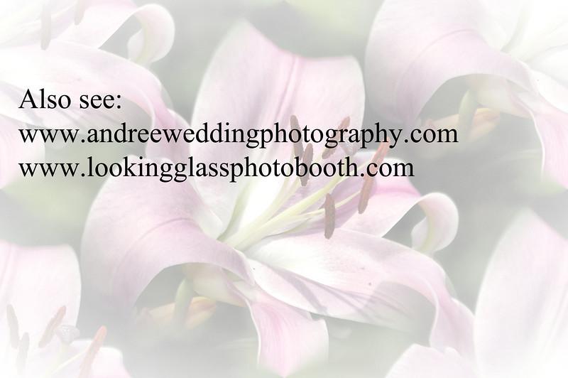 Photo Booth text.jpg