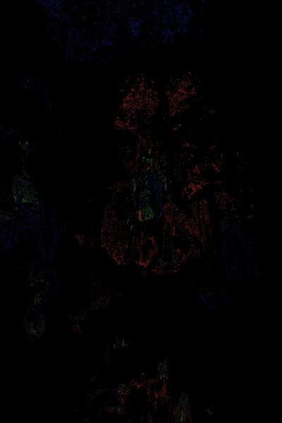 Meramec caverns - 12