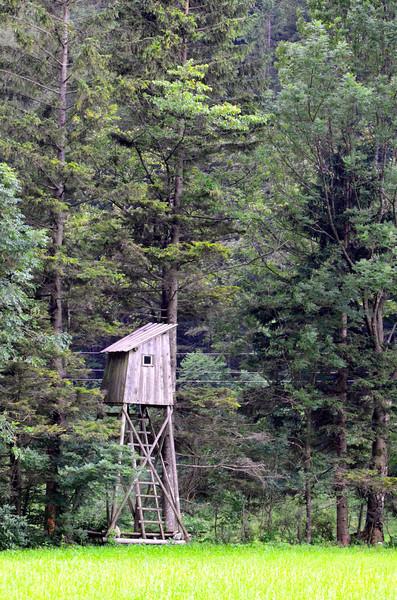 Observation Tower. Lu