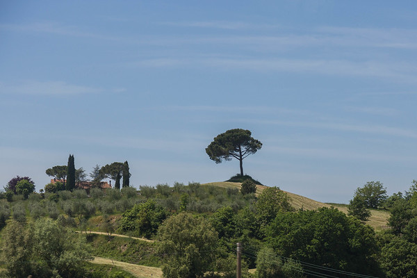 Train Through Tuscany, May 2014