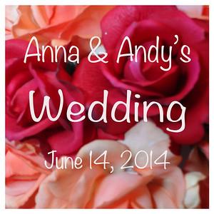 Anna & Andy's Wedding