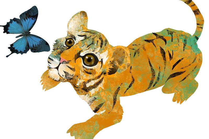 tiger cub copy.jpg