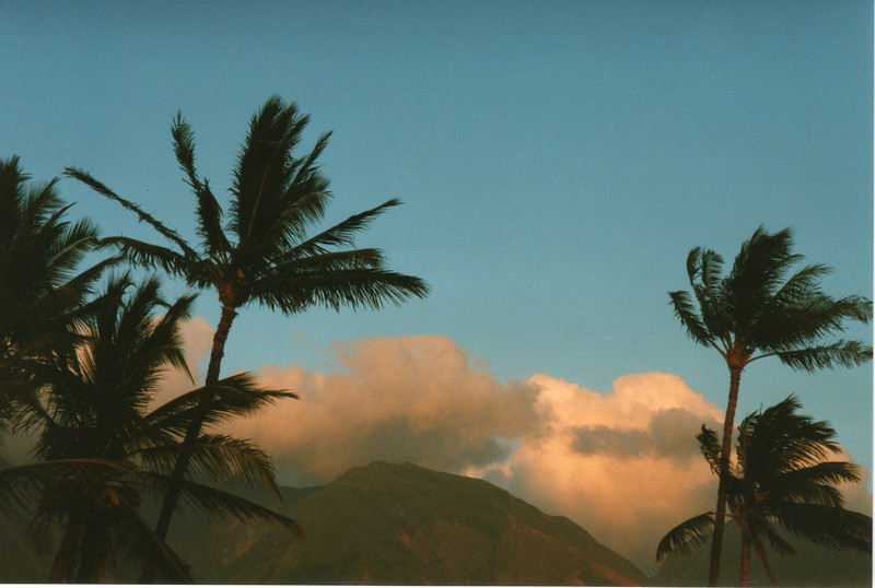 0530 - Lahaina, tropical sunset