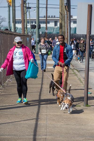 Richmond Spca Dog Jog 2018-736.jpg