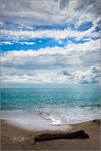 JM8_3064 Beach Log LPN r1 W.jpg