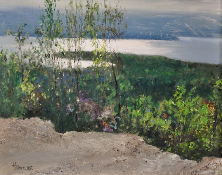 Poetry of Landscape, Acadia, Maine