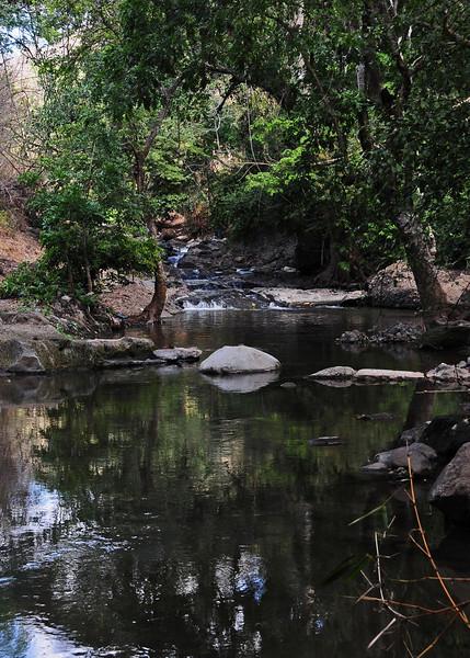 NEA_2488-5x7-Peaceful river.jpg