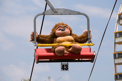 2008 Orange County Fair (July 20, 2008)