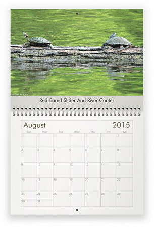 2015 Animals Wall Calendar
