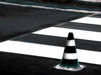 Signs - Zebre