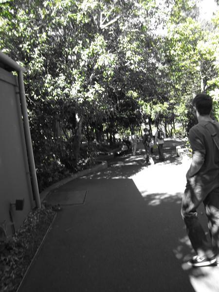 Sydney - Sydeny Zoo-36.JPG