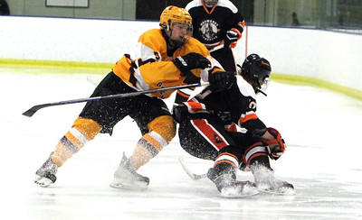 Baron Cup: Avon Lake beats Normandy