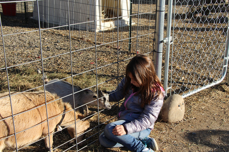 Secco Farm 077.JPG