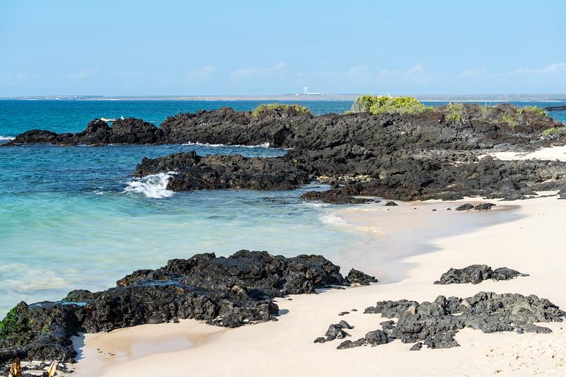 Galapagos-2689.jpg