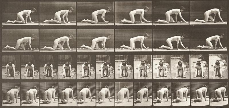 Nude woman crawling (Animal Locomotion, 1887, plate 182)