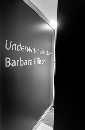 Underwater Phantoms Barbara Ellison