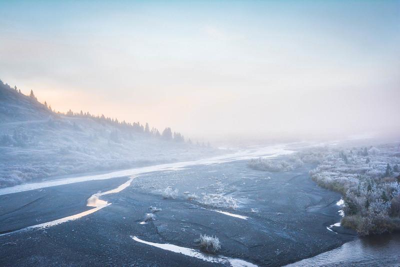 Denali-National-Park-57.jpg