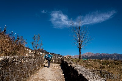 Dayara Bugyal, Uttarakhand