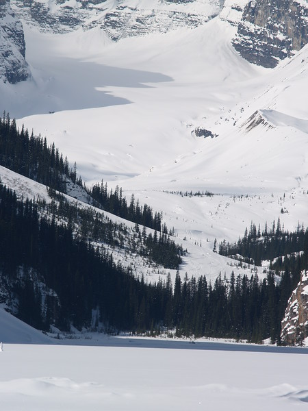 Lake Louise and Icefields Parkway 081.JPG
