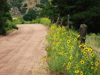 Shelf Road, Colorado  ---  Aug 21 & 23
