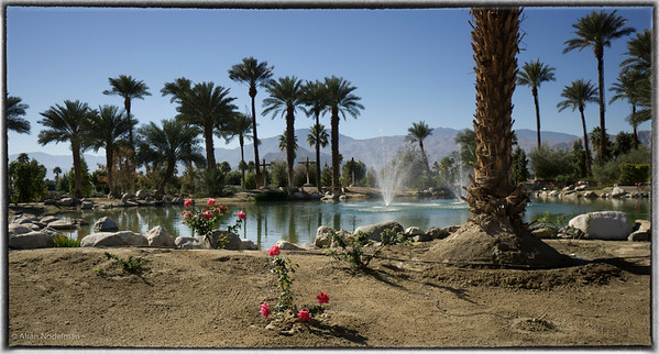 Palm Springs/Scottsdale/Grand Canyon  (February/March 2015)
