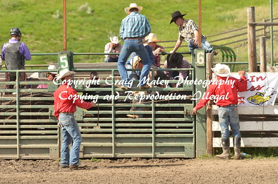 PERF BULLS 06-06-15
