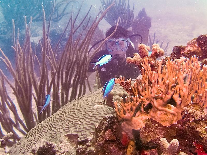 Dive Puerto Rico = Feb., 2013-Puerto Rico Dive Feb 2013-90-012.jpg