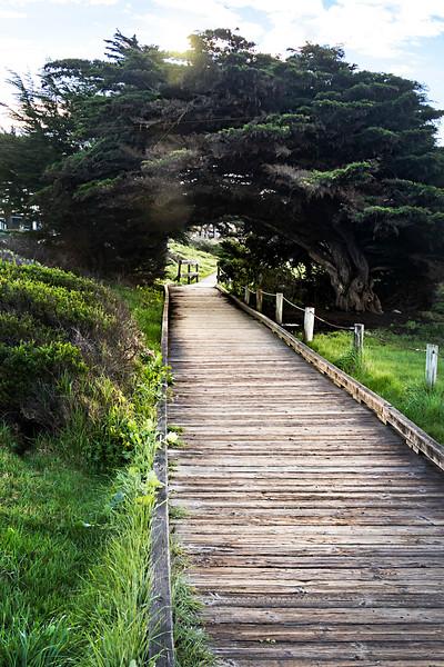 central coast-9086.jpg