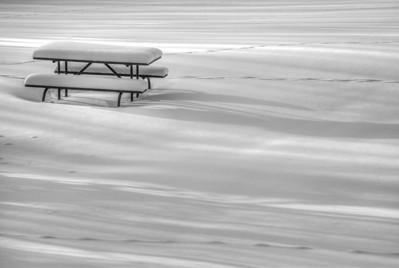 Elk Island Winter 2012