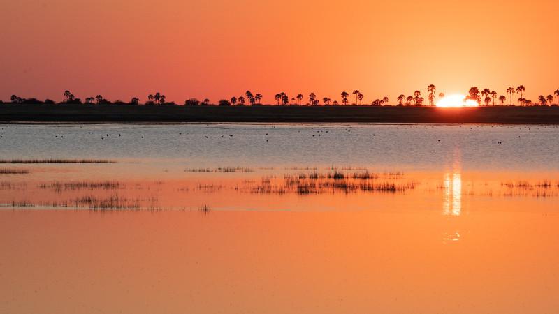 Botswana-0240.jpg