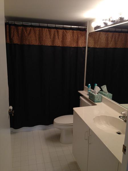 Guest Bath @ Purchae 2012