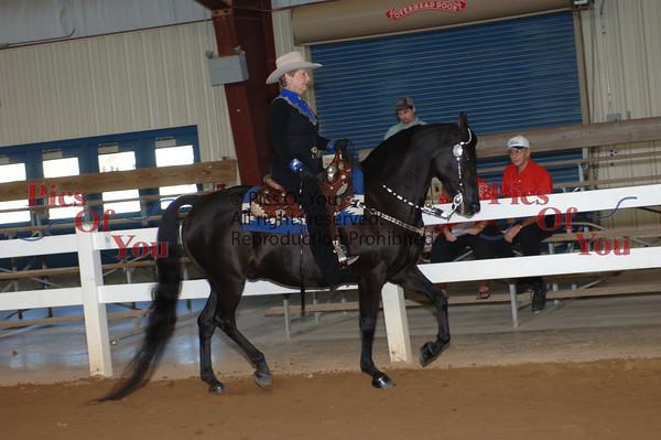 CLASS 022 Western Pleasure Amateur