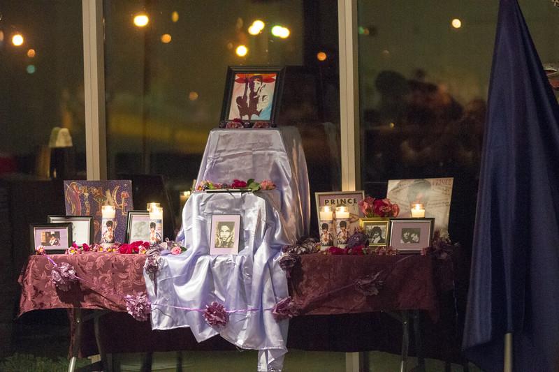 DSP dia de los muertos2017-05742.jpg
