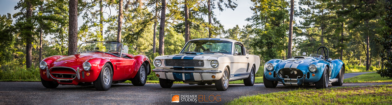 2019 RM - Shelby Monterey Collection 020 PANO - Deremer Studios LLC