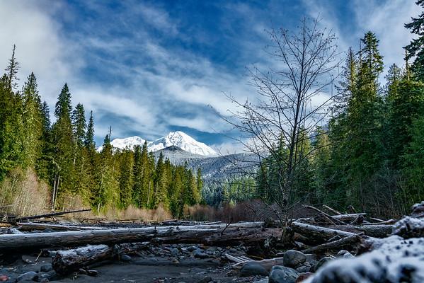Mt Rainier visit