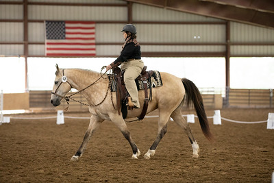 Horse 42