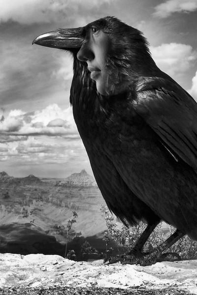 ravenface.jpg