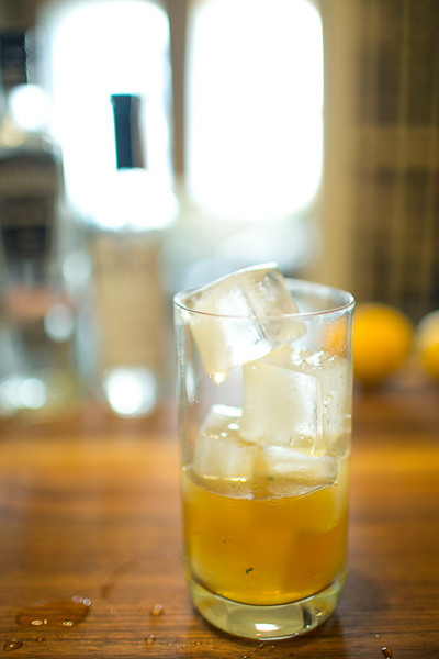 Dartmouth Highball Cocktail with Pimms and Gin-15.JPG
