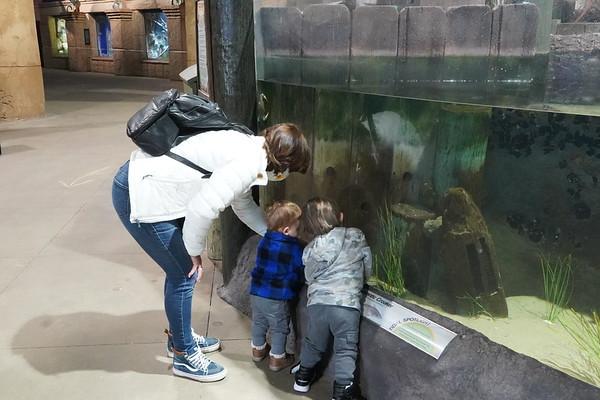 20210224 LI Aquarium