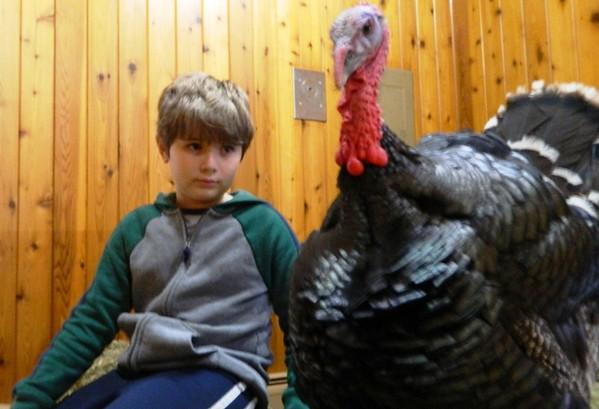 TurkeyTime-BR-112918 029