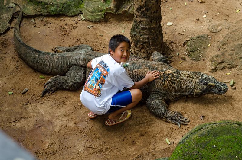 Petting Komodo