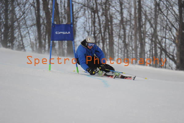 OFSAA Alpine 2015 Level II Women's GS