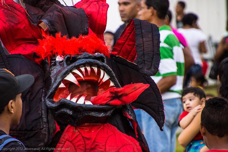 Carnival_2013-7368.jpg