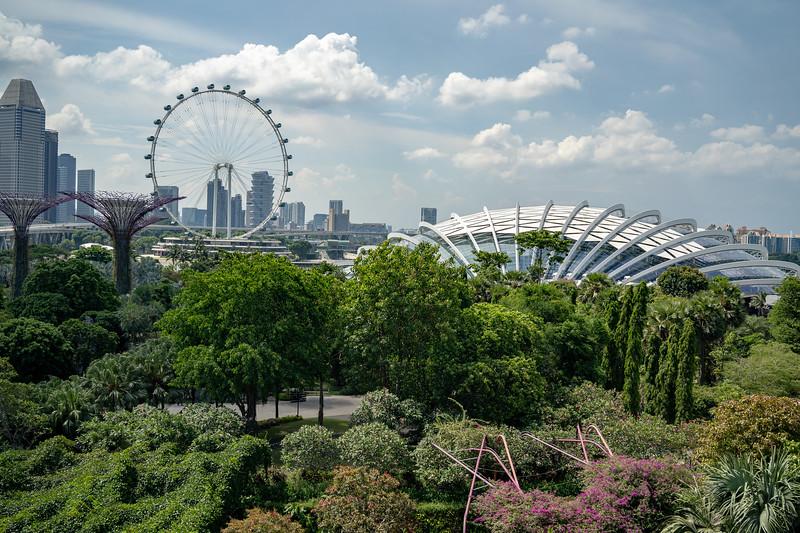 Singapore-19-062.jpg
