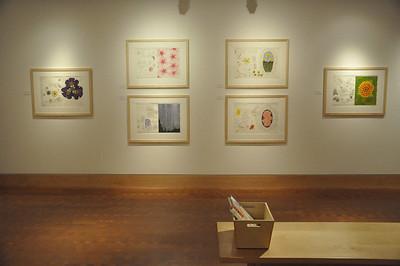 2013 A Garden of Ordinary Miracles: Robert Zakanitch - Installation