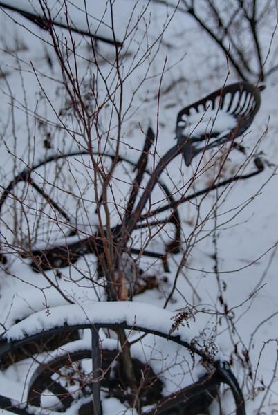 Easy Pickins Winter 005-1676783918-O.jpg