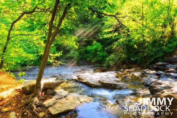 Tanyard Creek Falls