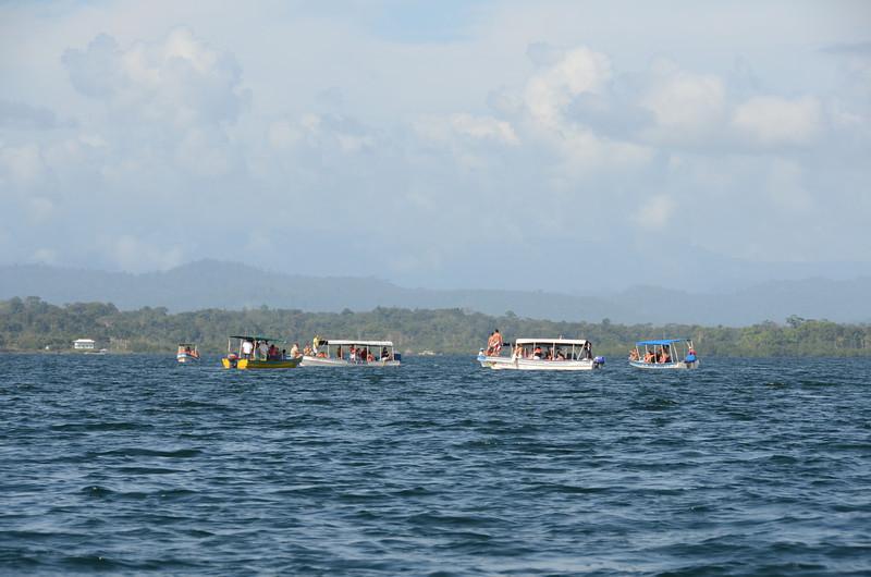 Bocas del Toro Boat Tour 12.jpg