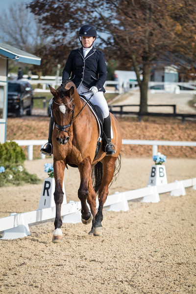 USDF Finals 2017 Sunday-211.jpg